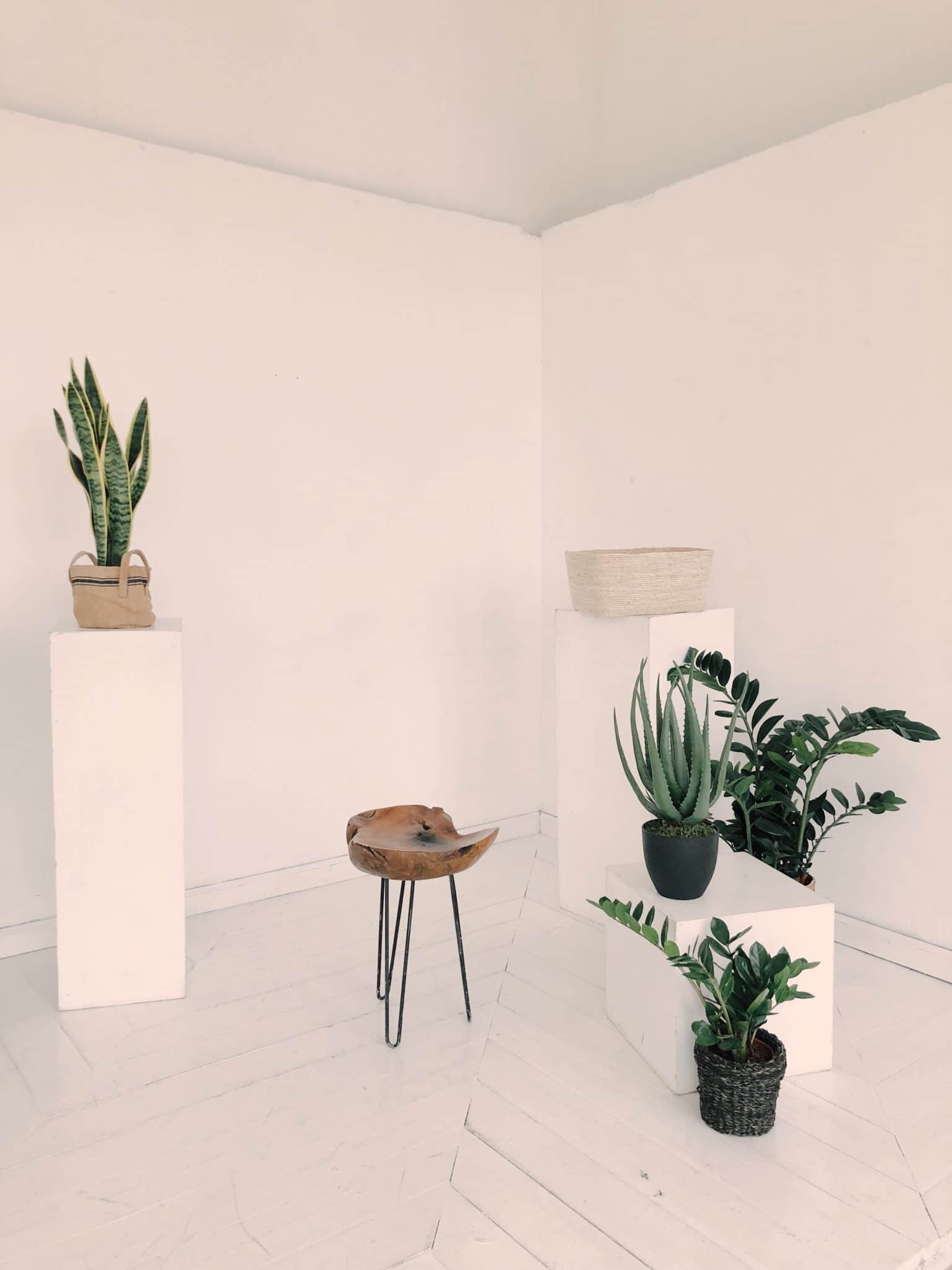 An Empty Tiny Apartment With White Walls